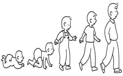 rythme croissance enfant parent
