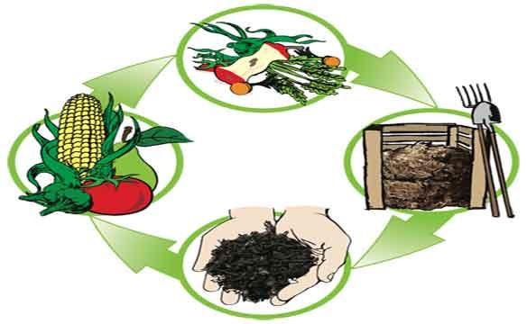 compost compostage bio biologique écologique jardin