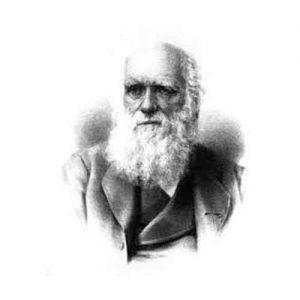 darwin emotion six universelle primaire secondaire