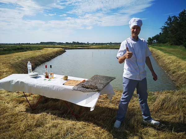 Faire un pique-nique au sein de marée d'huîtres